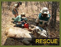 VFAPU rescue