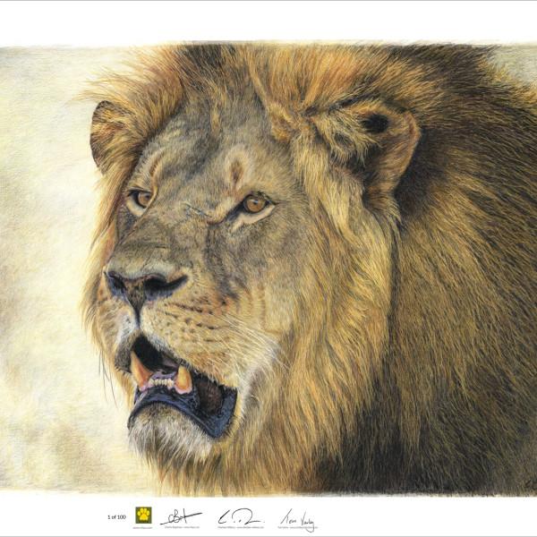 Lion Final3+LOGO