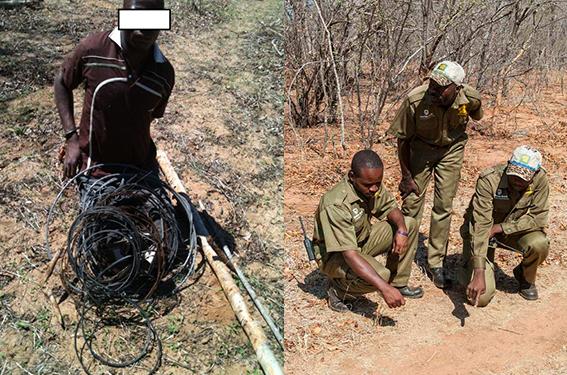 VFAPU - Wildlife Poacher and Anti Poaching Team
