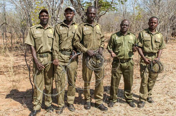 VFAPU - Anti Poaching Scouts with snares