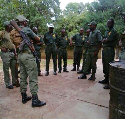 VFAPU scouts